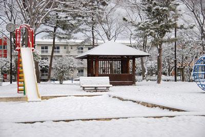 かえる公園の雪