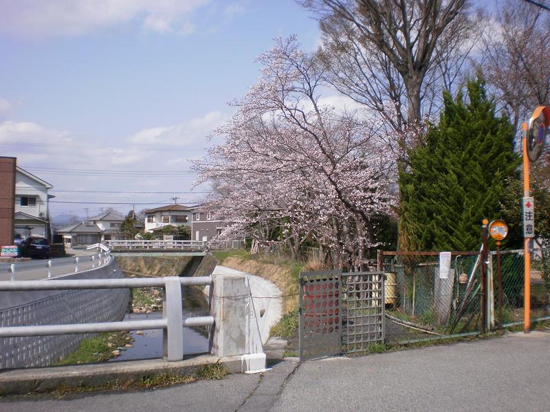 名来廿日田公園