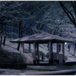 奨励賞 雪の下山口公園 野垣美桜
