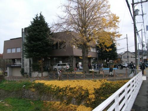 下山口会館 イチョウの葉がたくさん落ちました