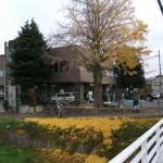 下山口会館 イチョウの葉もかなり落ちました