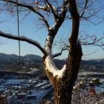 財団法人山口町徳風会賞  藤江 泰 雪の朝(丸山参道南側)