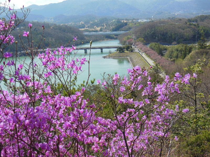 南参道金仙寺湖を眺める