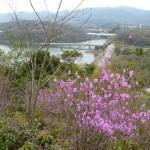 金仙寺湖を望む