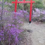 北参道水道タンク付近