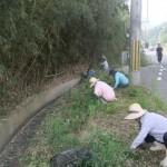 道路沿いの草も刈ります