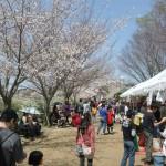 有馬川緑道 桜まつり