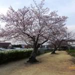 春道公園16-6