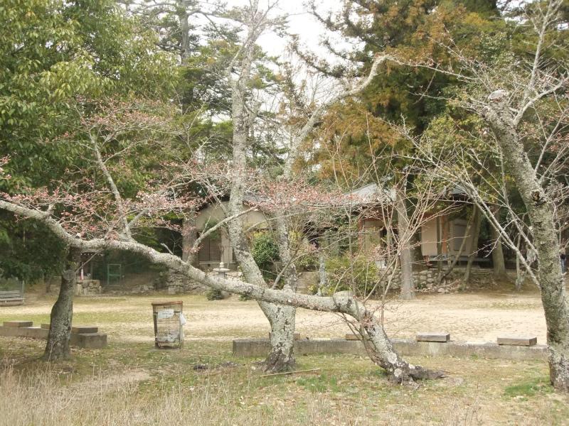 金仙寺観音堂329