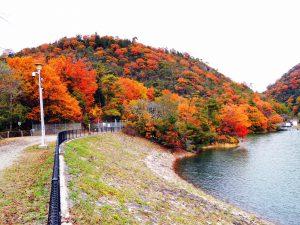 金仙寺湖畔から紅葉の丸山