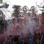 10月8日 公智神社の秋祭り
