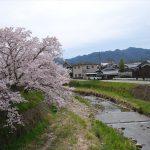 さくらやまなみバス賞 前田宏明 『さくらやまなみバスが往く』