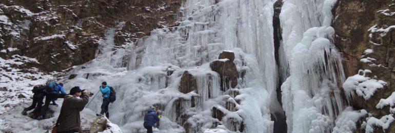 みんなで選んだ賞(阪急バス) 山口年代「厳冬の風物詩七曲滝の氷瀑」