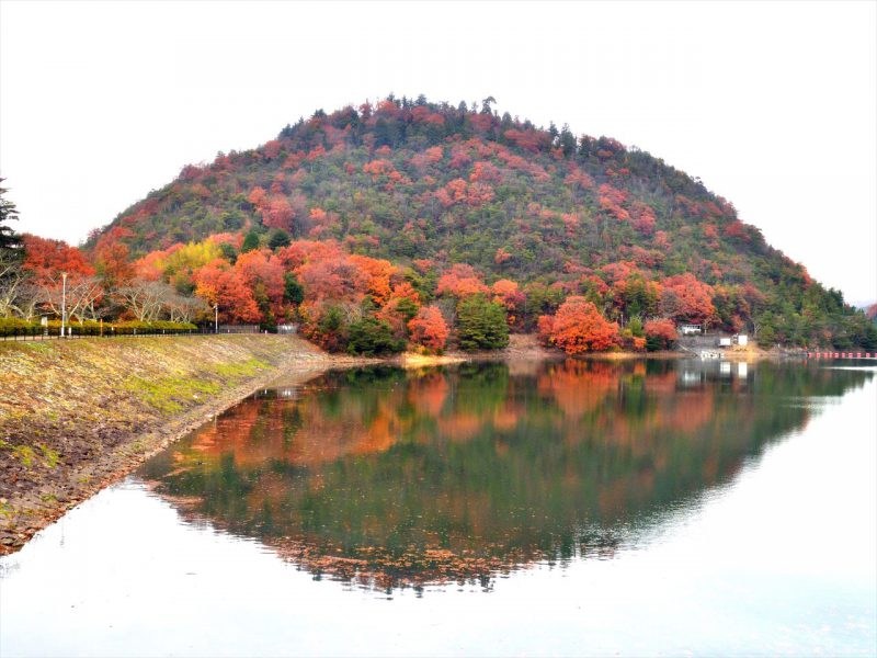 入賞 小幡誠「くちびるの山」