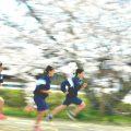 第11回山口フォトコンテスト作品展示会